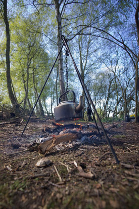 Kettle, tripod and the woods.